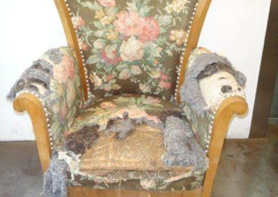 Stilvoller Sessel vorher